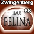Haus Felina in Zwingenberg